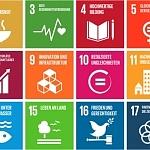 Nachhaltigkeit zu einem leitenden Prinzip der neuen strategischen EU-Agenda machen!