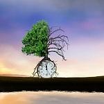 Die Mischung macht's: Politikmix zur Erreichung der Klimaziele u. der Ziele nachhaltiger Entwicklung