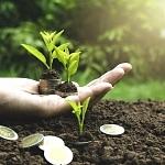 Frankfurt School und WWF Deutschland entwickeln Tracker für Klimawirkung des Finanzsystems