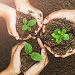 Nachhaltigkeit aus psychologischer Perspektive