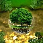 """""""G6""""-Umweltminister erhöhen Druck auf sich selbst beim Klimaschutz"""