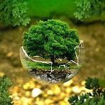 Aufbruch zu stärkerem Klimaschutz: EU muss beim Klimagipfel in Madrid zum Zugpferd werden