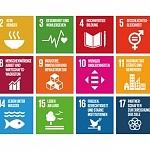 Kann künstliche Intelligenz zur Umsetzung der UN-Nachhaltigkeitsziele beitragen?