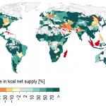 Die Welt ernähren, ohne den Planeten zu schädigen, ist möglich
