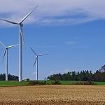 Studie: Der Weg zum globalen Nachhaltigkeitsbericht