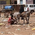 Gerechte Klimapolitik könnte helfen, extreme Armut zu verringern